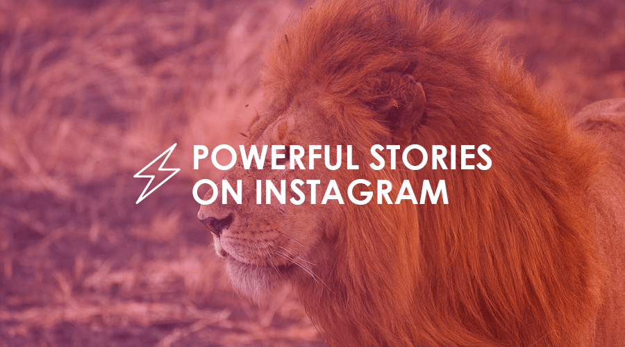 How to tell powerful stories on Instagram to get more sales